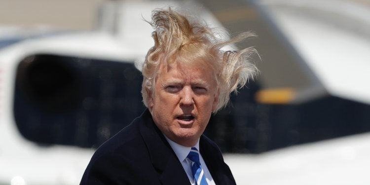 trump windy bad hair day